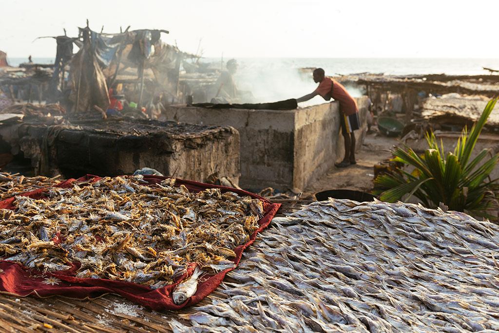 Asadero de pescado en playa de Tanji, Gambia