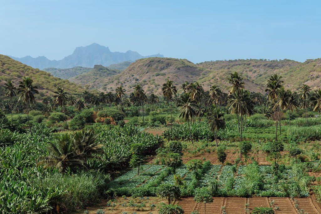 Viajar a Cabo Verde; valle tropical en Santiago