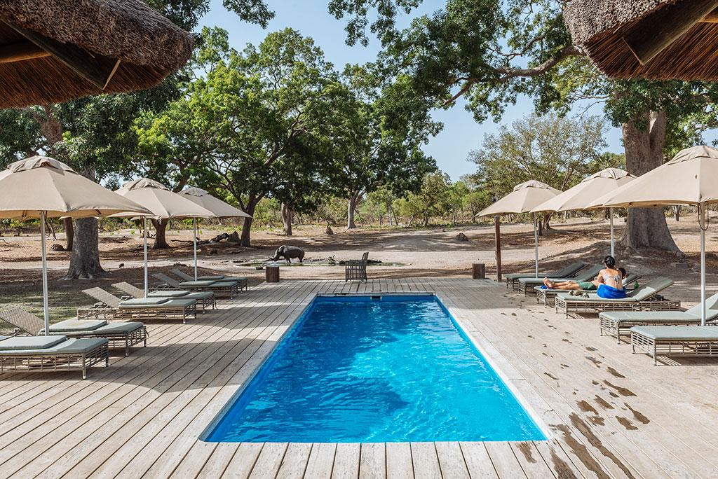 Piscina en Fathala Lodge con rinoceronte