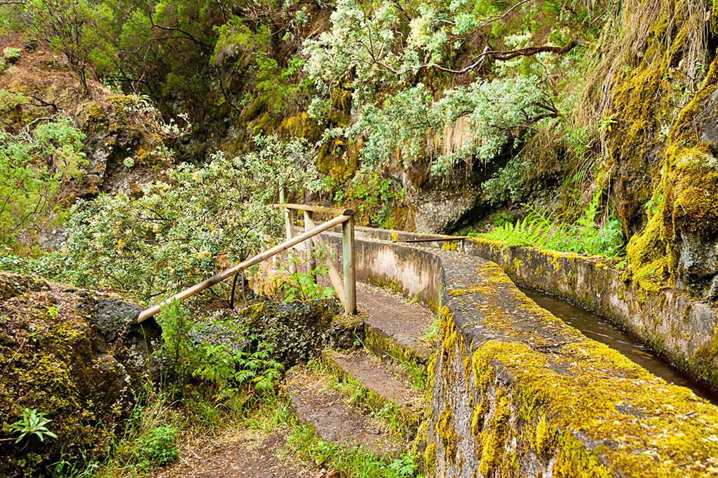 10 lugares que no puedes perderte en La Palma: Barranco Los Tilos